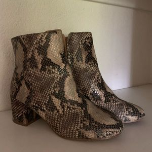 UO Faux Snake booties